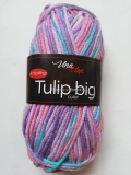 Tulip Big Color 5606