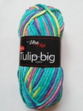 Tulip Big Color 5605